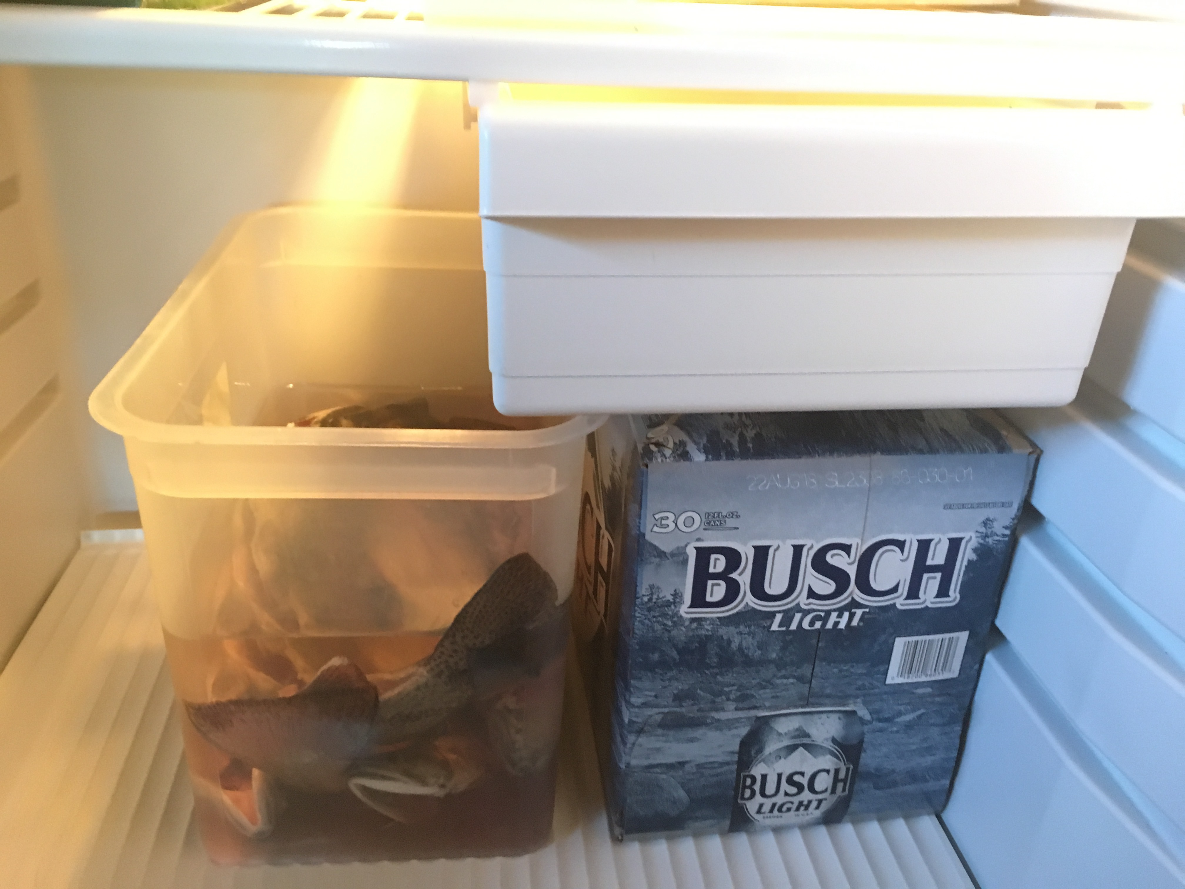 A case of Busch Light next to a tub of trout in a refrigerator