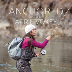 The cover art of the Anchored podcast