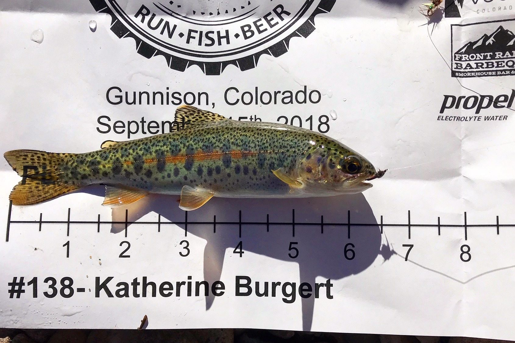 A small trout on a score sheet for the Flyathlon