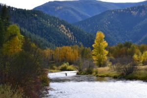 A fly fisherman wades in a river in fall with mountains in the background