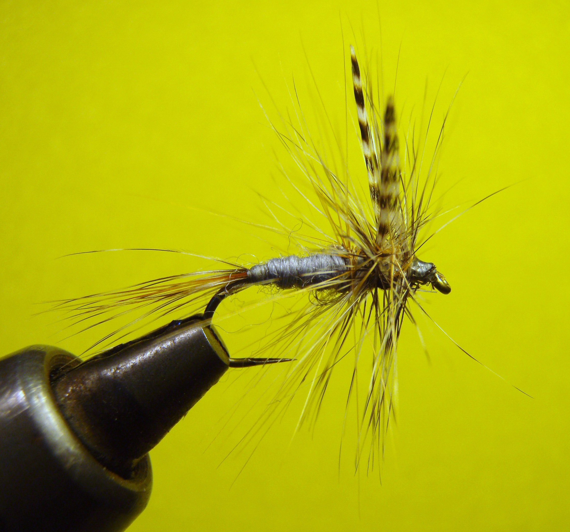 An Adams fly in a vice.