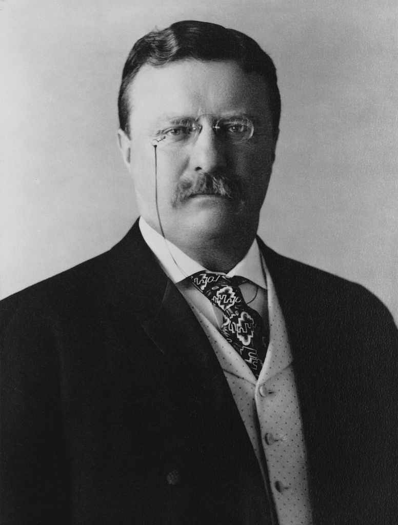 A photo of Theodore Roosevelt.