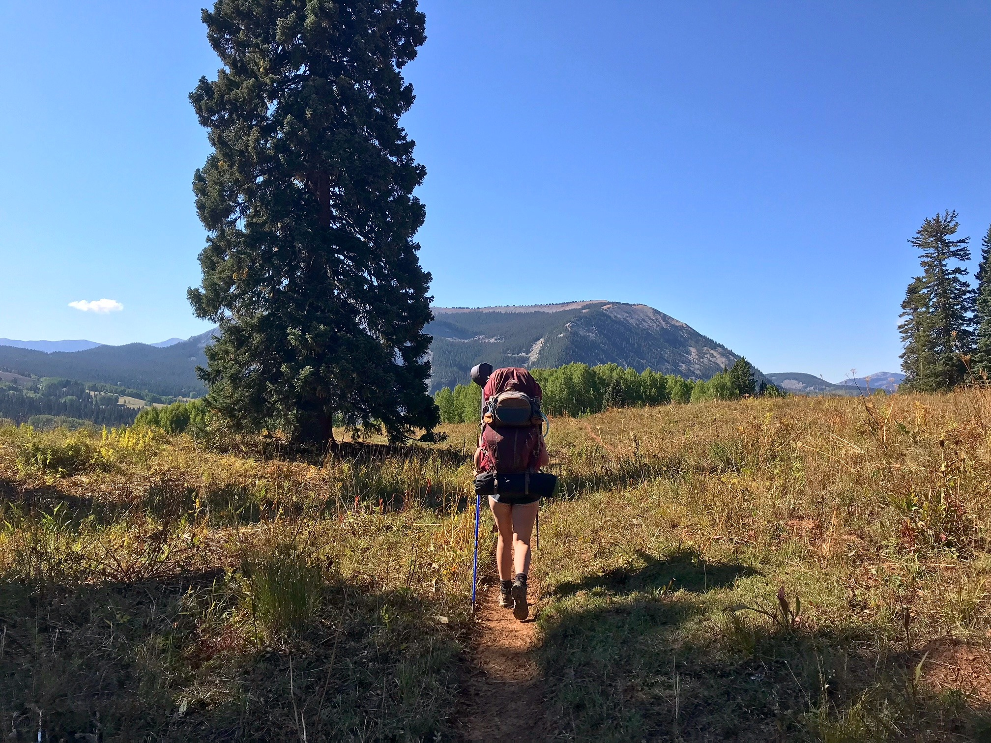 A woman hikes along a trail with a mountain in the background.