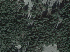 An aerial photo of a forest.