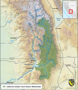 A map of the small native range of golden trout.