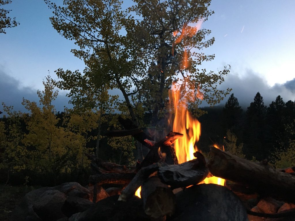 An evening campfire in front of aspen trees
