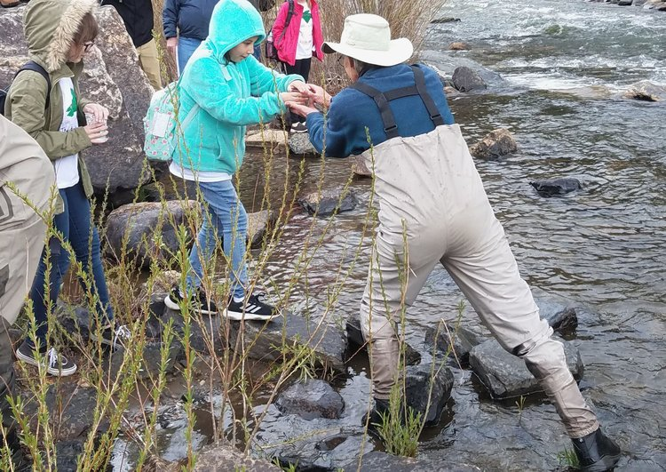 An adult helps a child release a fish into a river.
