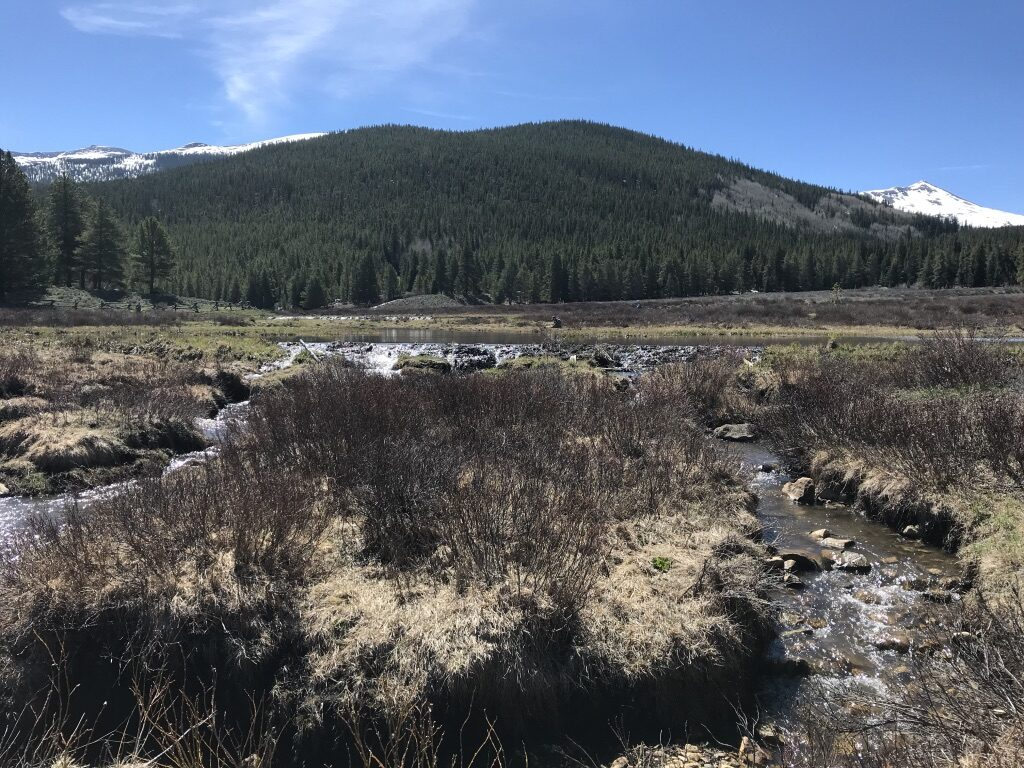 A meadow of streams and beaver ponds with a mountain in the background.