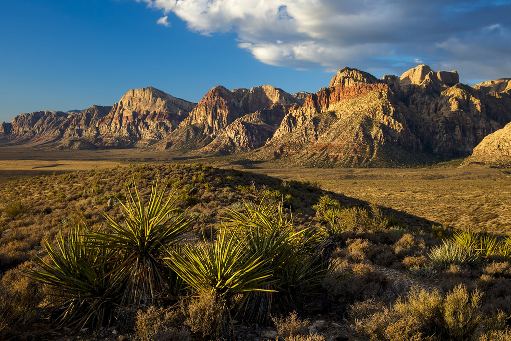 Red Rock Canyon National Recreation Area.