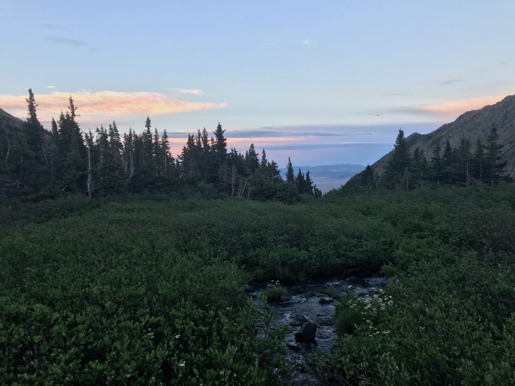 A mountain stream snaking between low bushes with a sunset in the background.