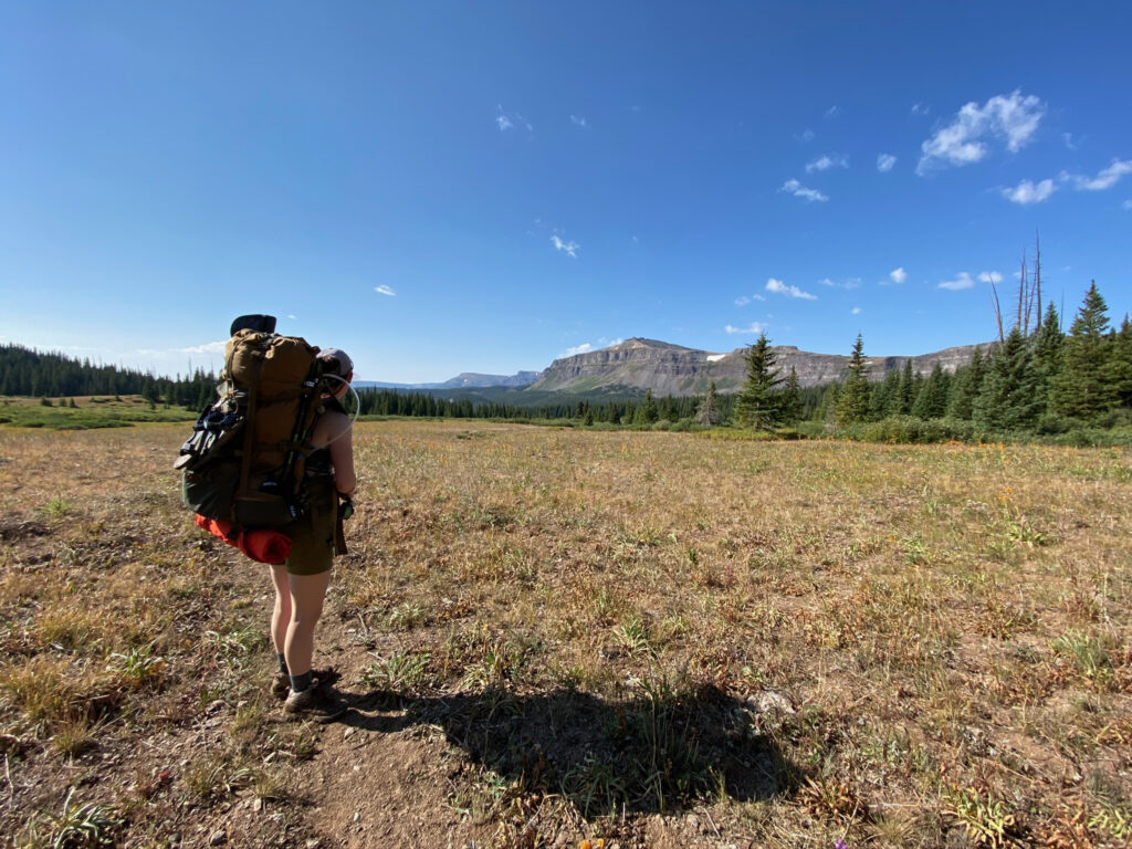 A backpacker stands in a field facing away from the camera
